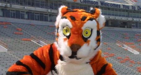 clemson-tigers_medium